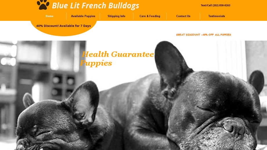 Bluelitfrenchbulldogs
