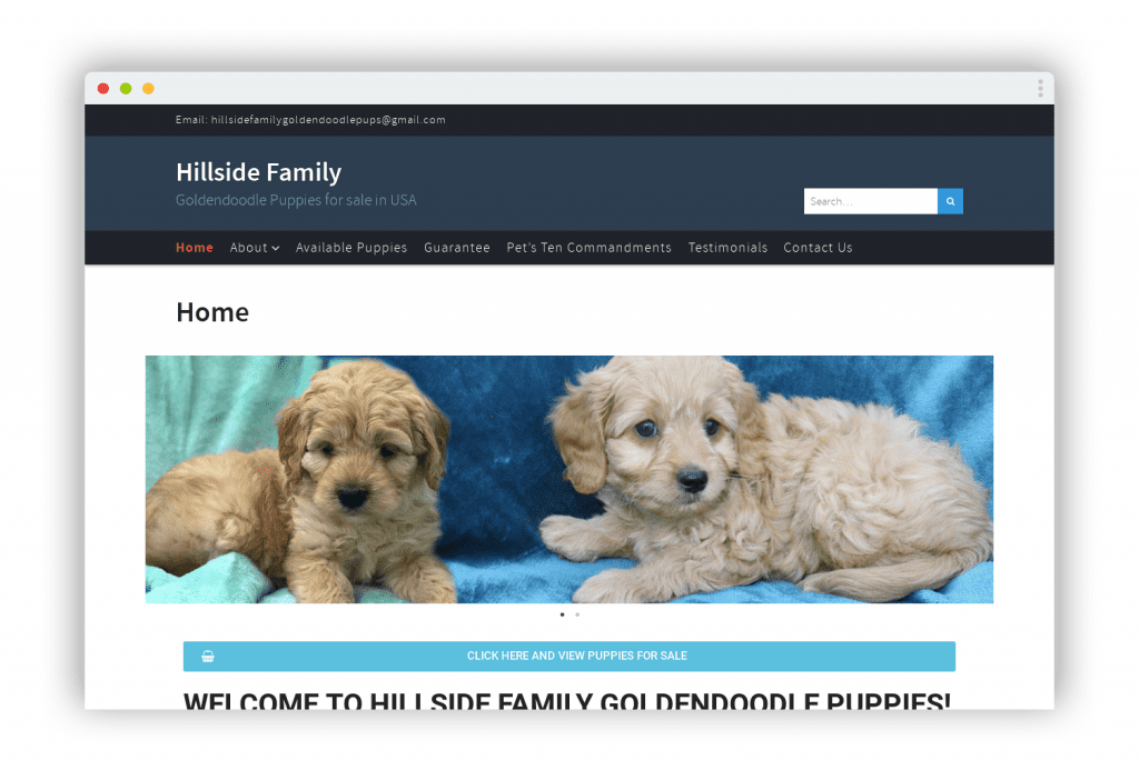 Hillsidefamilygoldendoodlepuppies