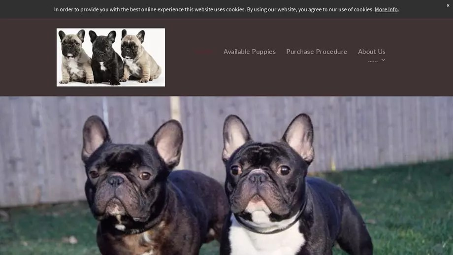 Chrisfrenchbulldogs