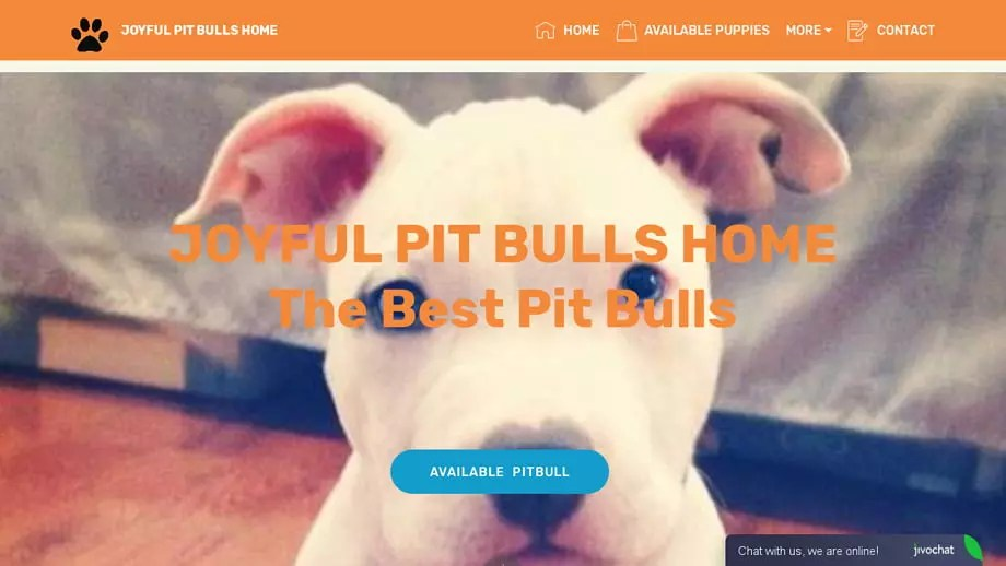 Joyfulpitbullshome