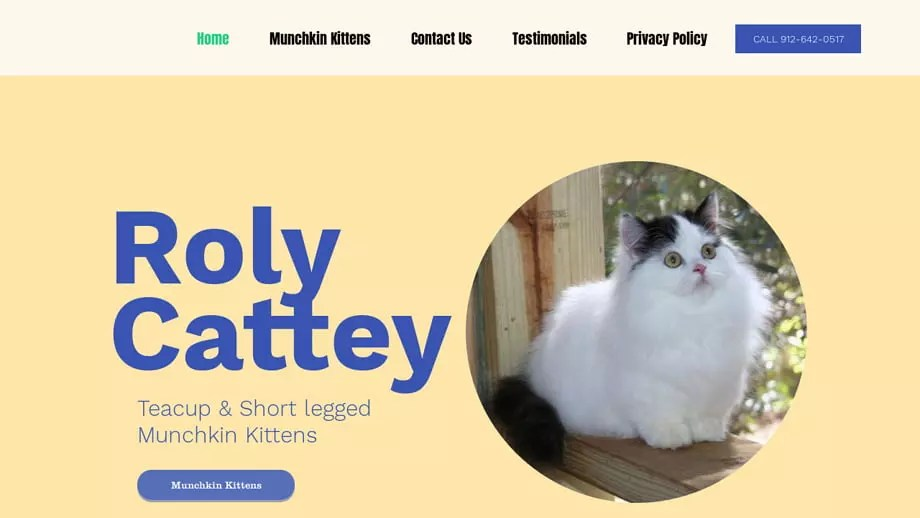 Rolycattery