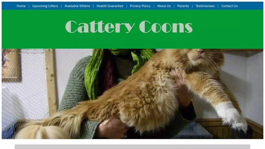 Catterycoons