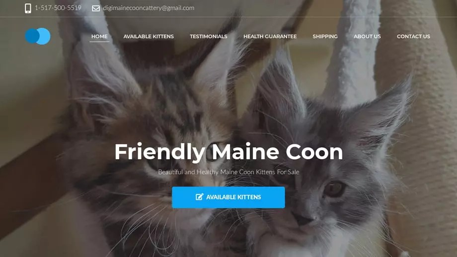 Digimainecooncattery