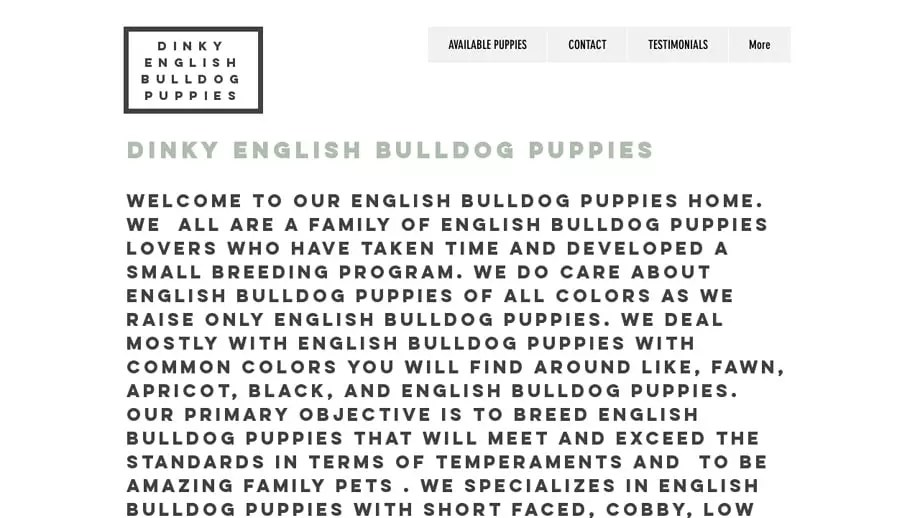 Dinkyenglishbulldogs