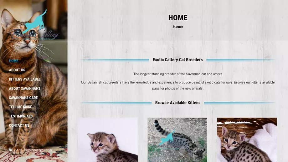 Exoticcattery