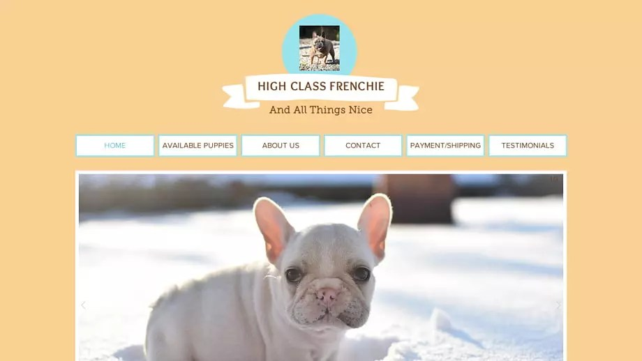 Highclassfrenchie