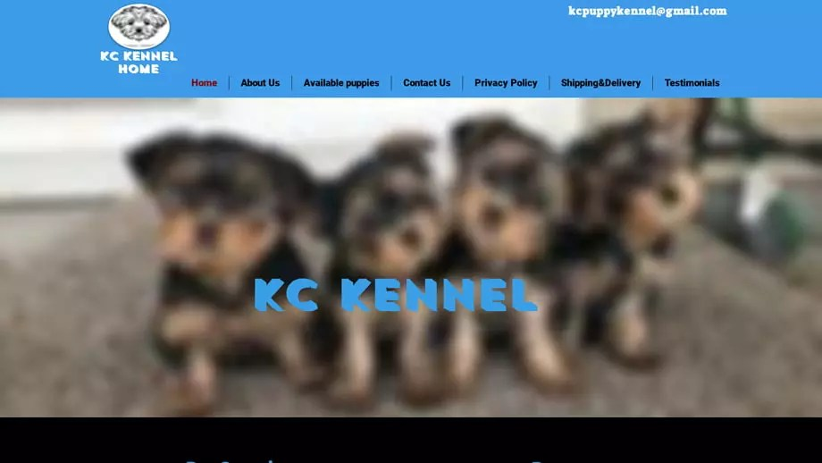 Kcpuppykennel