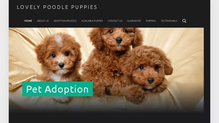 Lovelypoodlepuppies