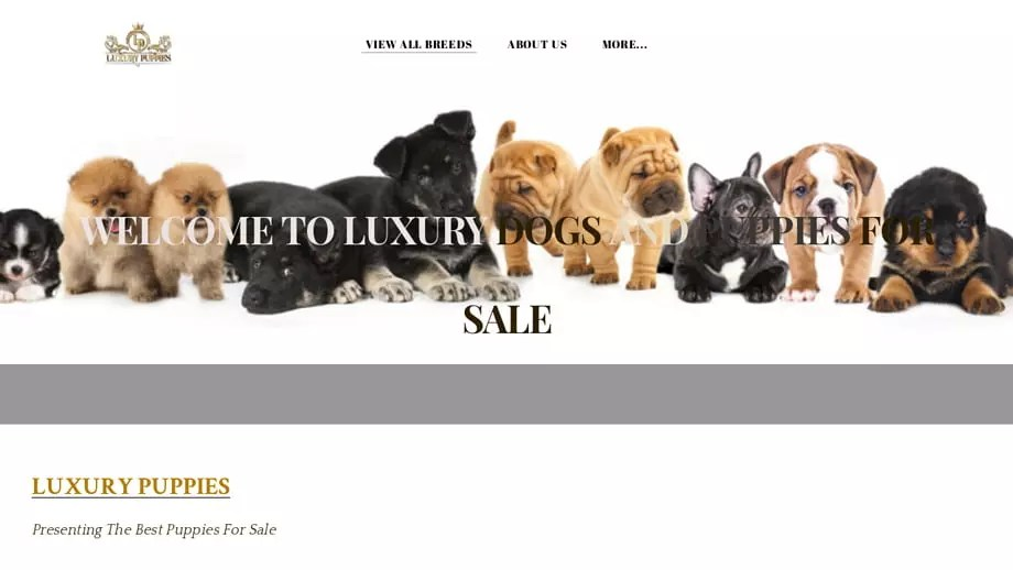 Luxurydogsandpuppies4sale
