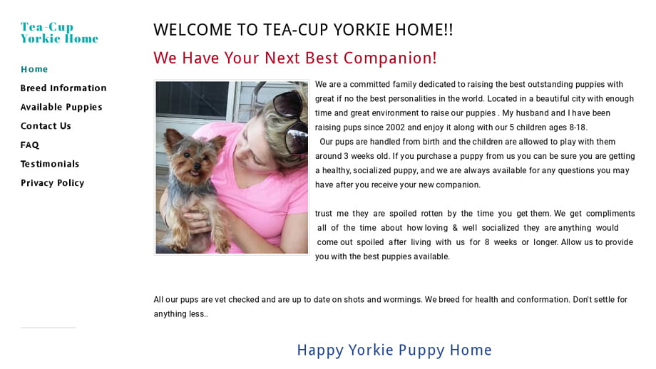 Teacupyorkshirepupsales