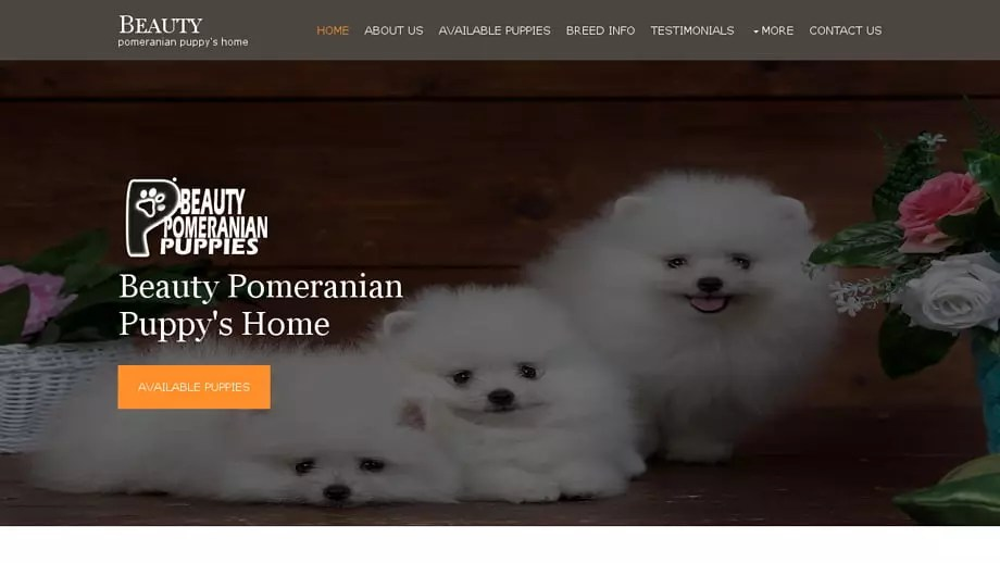 Beautypomeranianpuppies