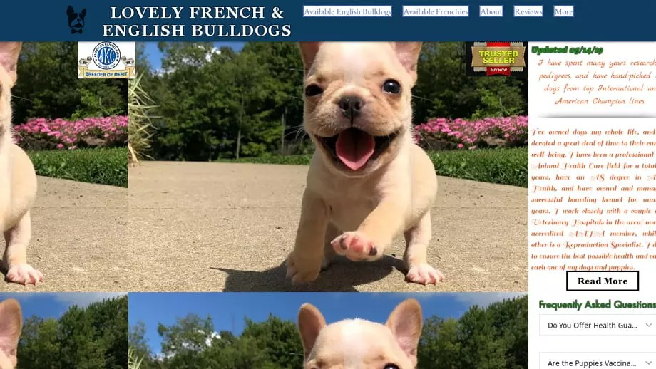 Frenchiepuppy