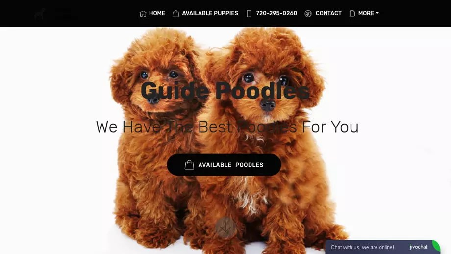 Guidepoodles