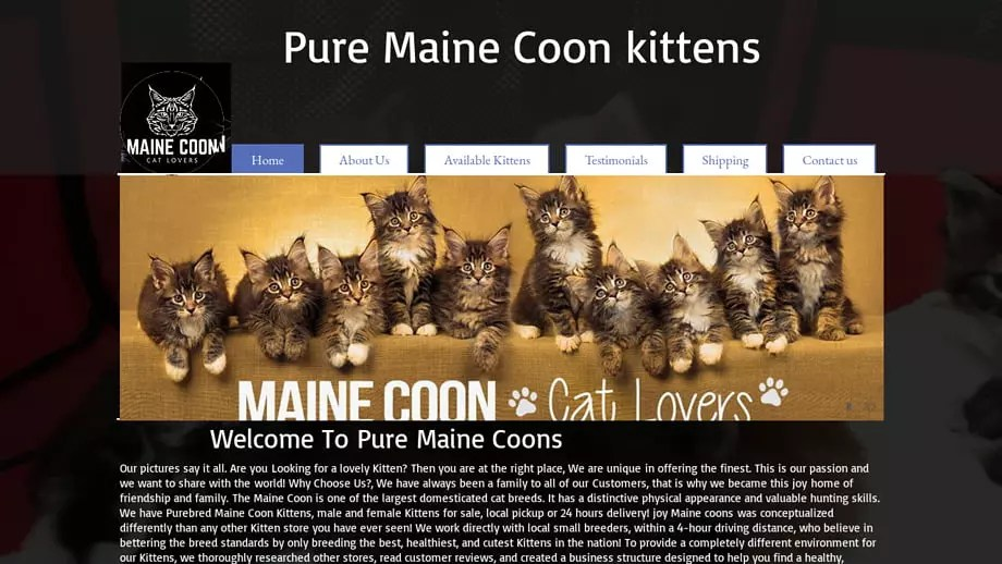 Puremainecoons