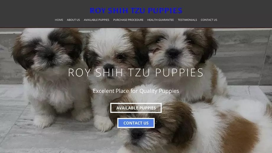 Royshihtzupuppies