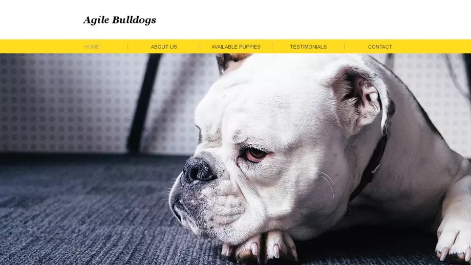 Agilebulldogs