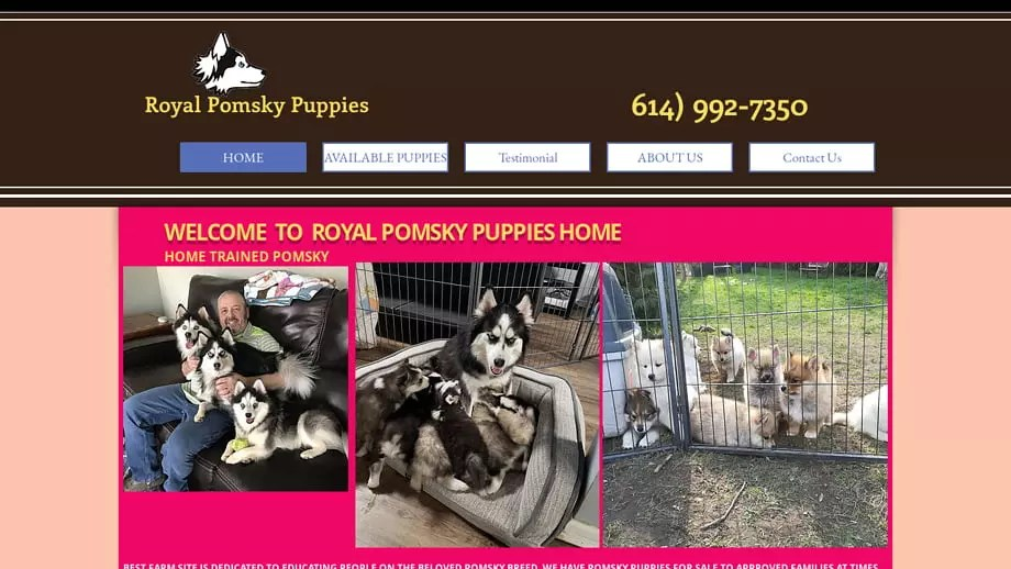 Royalpomskypuppies