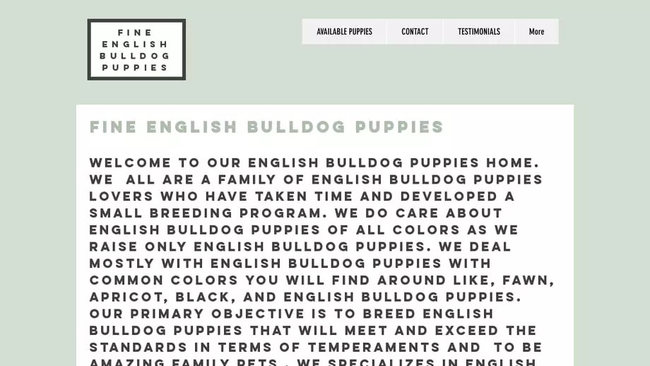 Tidyenglishbulldogs