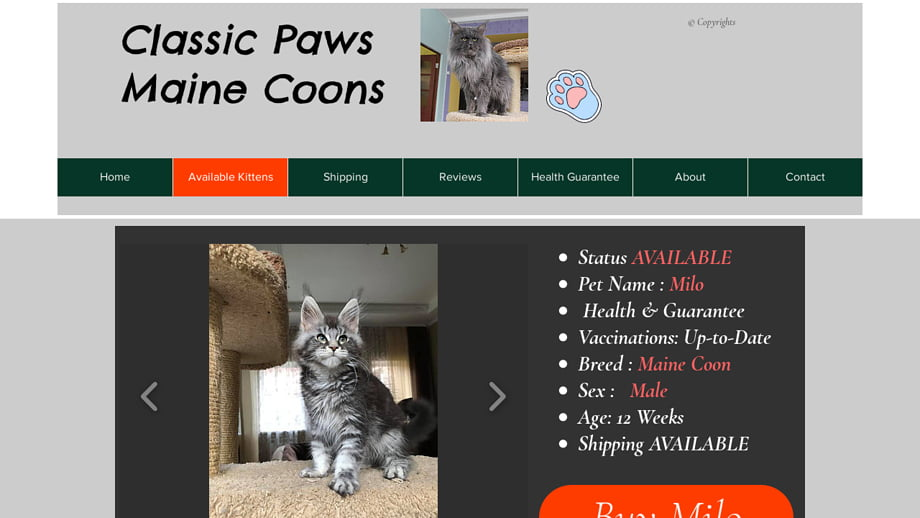 Classicpawsmainecoons