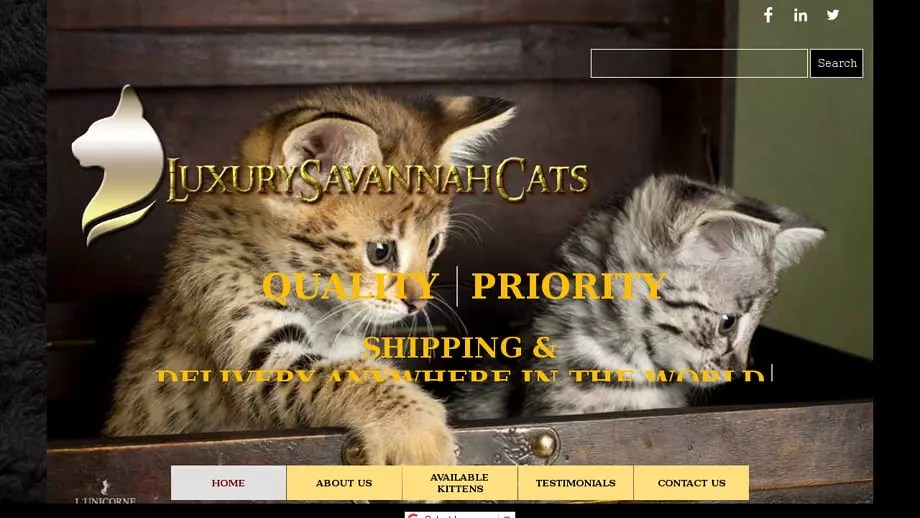 Luxurysavannahcats