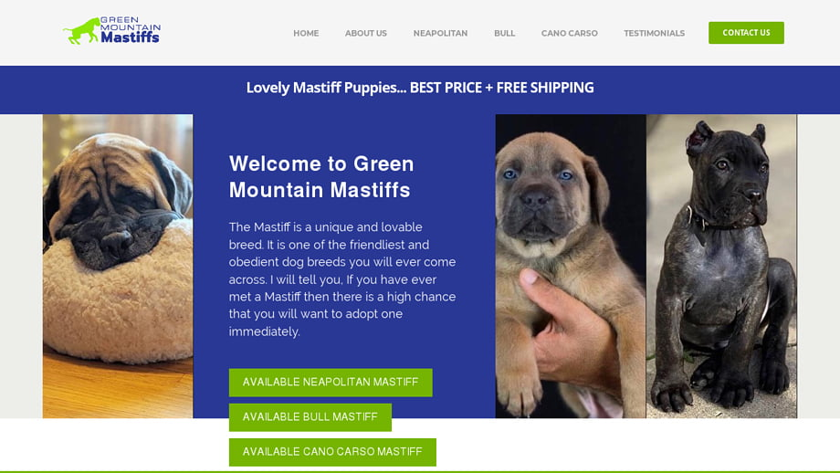 Greenmountainmastiffs