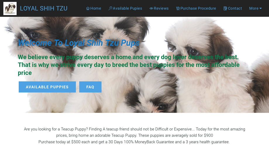 Loyalshihtzupuppies