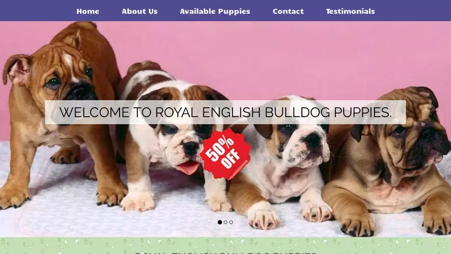 Royalenglishbulldogpuppies