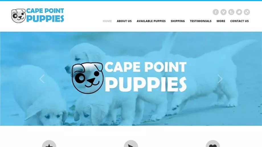 Capepointpuppies