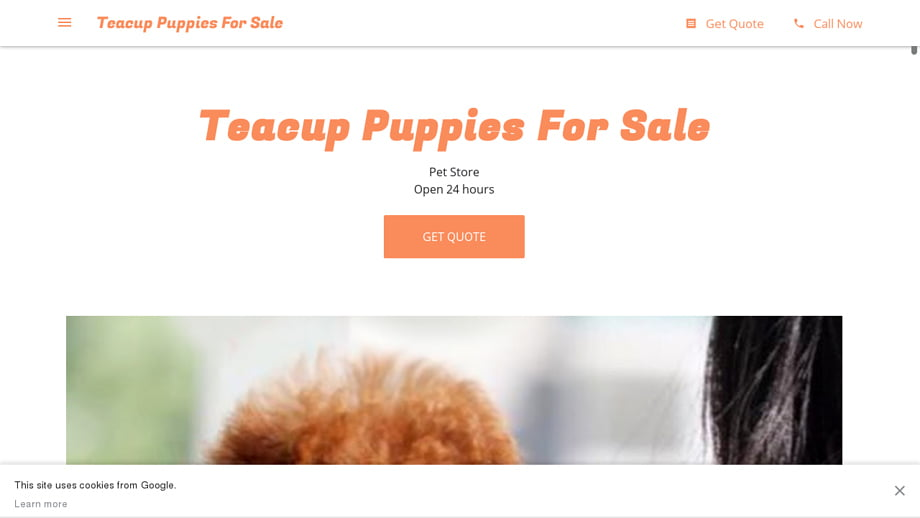 Fortune-teacup-puppies-for-sale