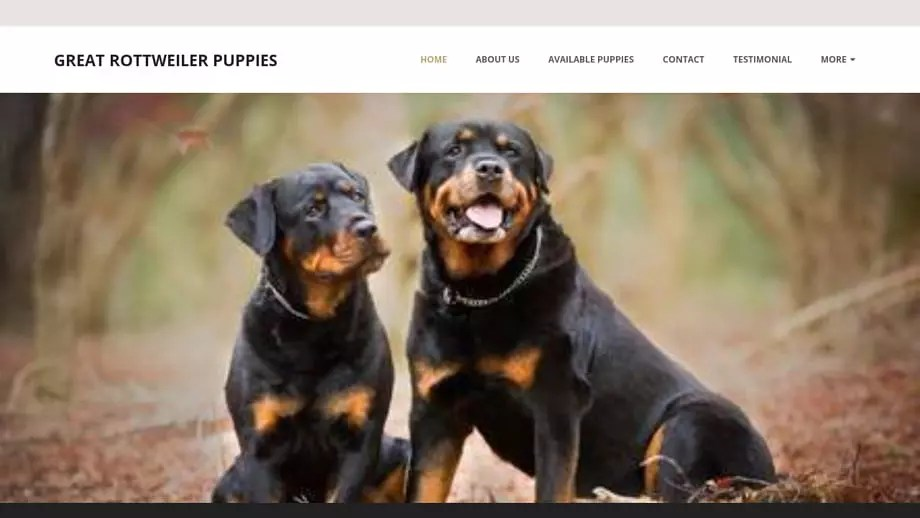 Greatrottweilerpuppies