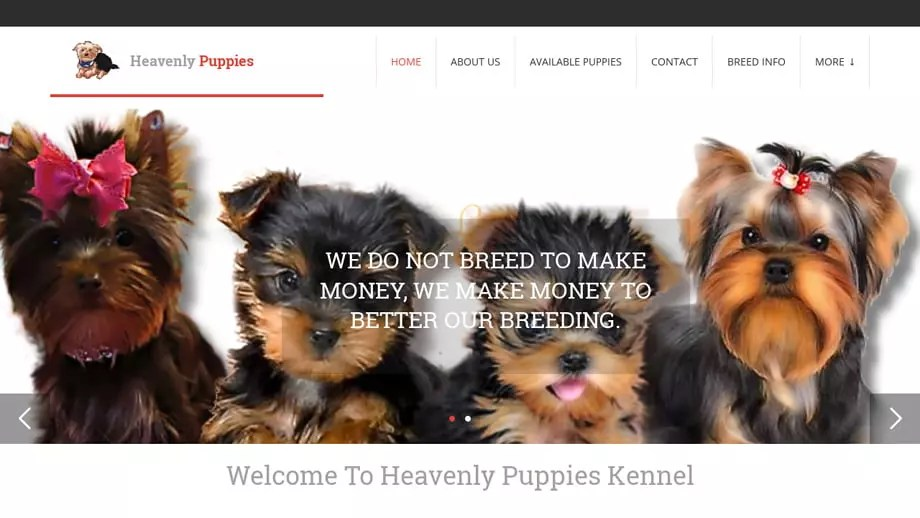 Heavenly-puppies