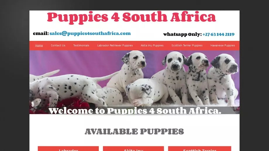 Puppies4southafrica