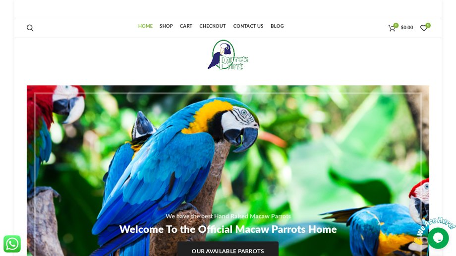 Officialmacaw
