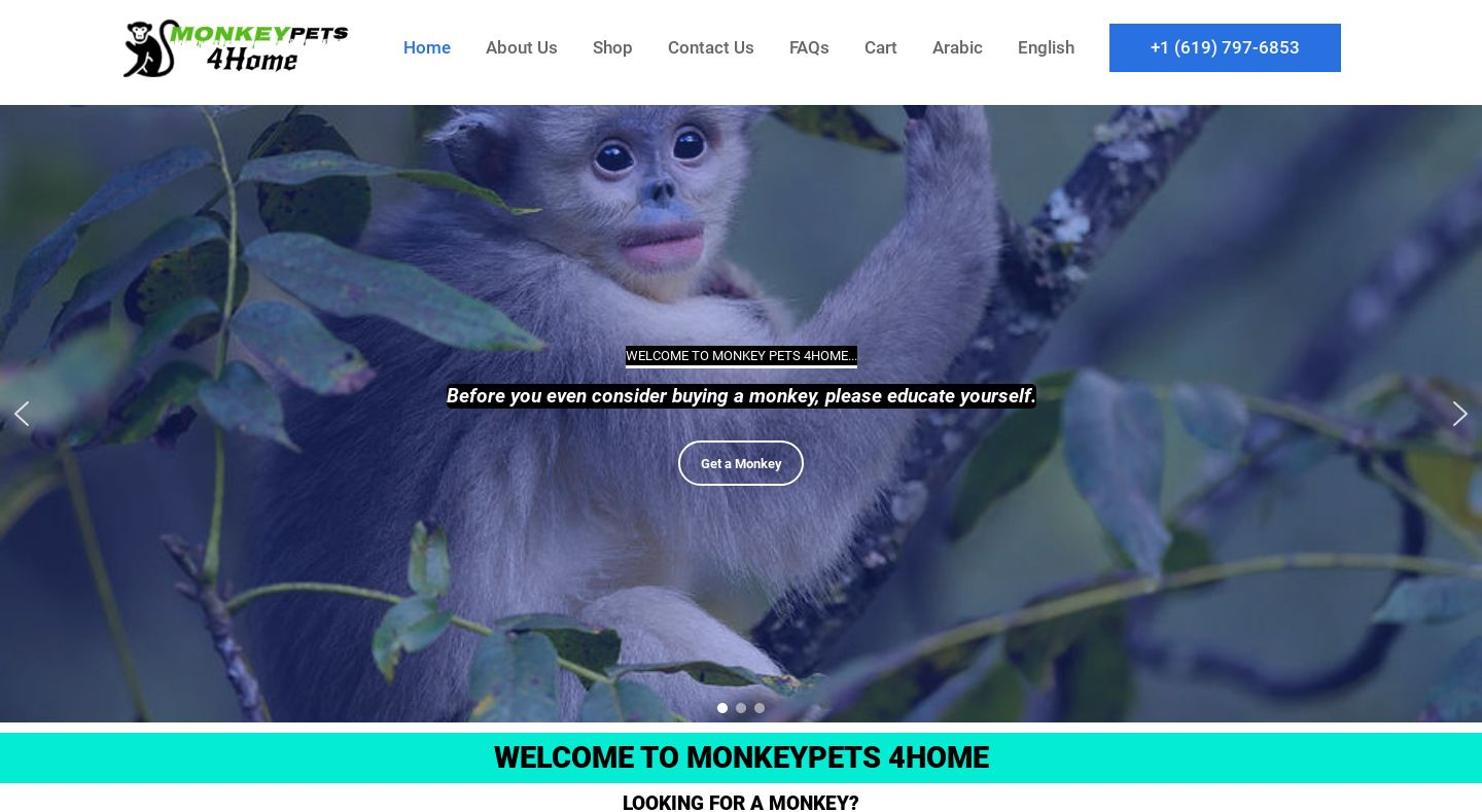 Monkeypets4home