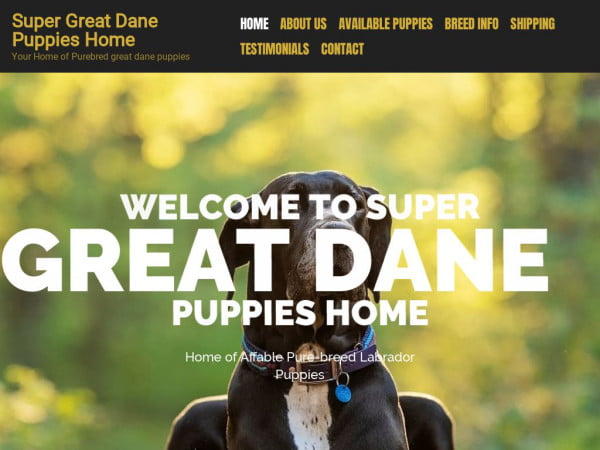 Supergreatdanepuppieshome