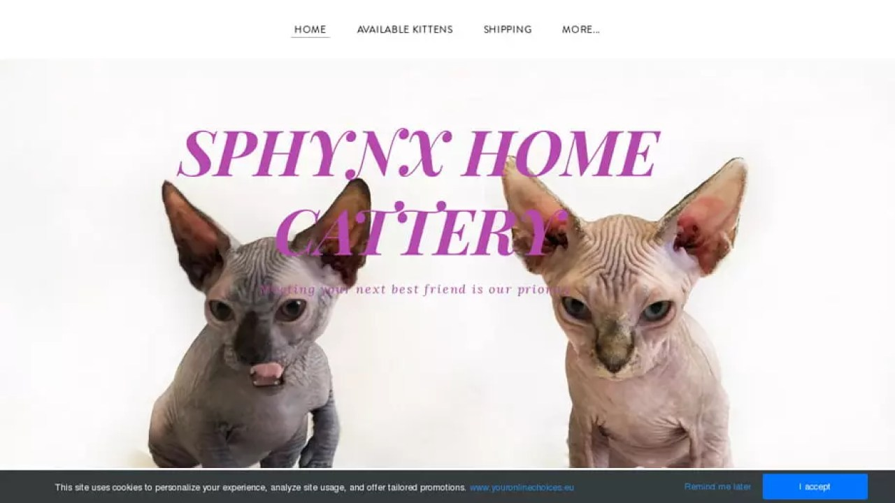 Pet Scam Website: Sphynxhomecattery com SPHYNX HOME CATTERY