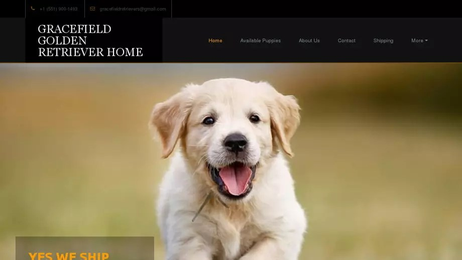 Gracefieldgoldenretrieverpuppies