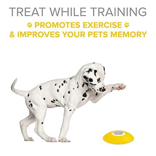 Dog Treat Dispenser >> Arf Pets Dog Treat Dispenser Dog Puzzle Memory Best Suggestion