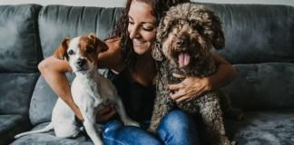 does gender matter when adopting a third dog