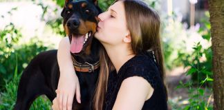 Living With a Doberman