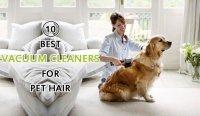 Dog Hair Couch Vacuum - Goldenacresdogs.com