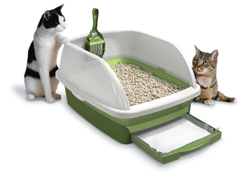 Tidy Cat Breeze Review