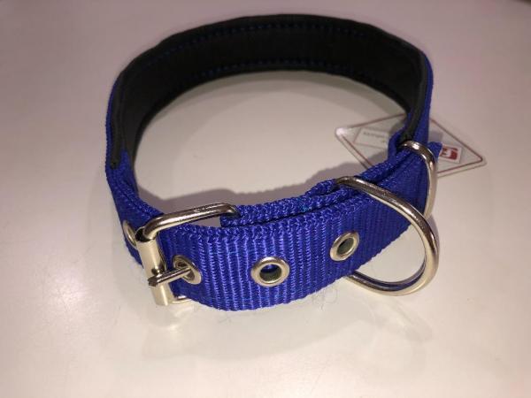 Dog Puppy Buckle Collar Adjustable Nylon Soft Foam Lining Heavy Duty blue