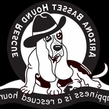 Arizona Basset Hound Rescue