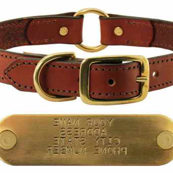 Beagle Collars With Name Plates