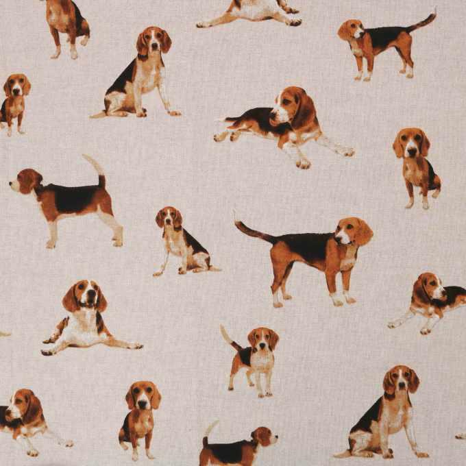 Beagle Fabric