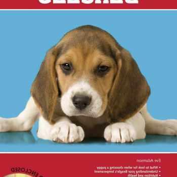 Beagle Training Books