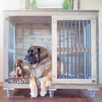 Best Crate For Great Dane
