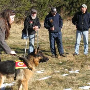 Bob Frampton German Shepherd