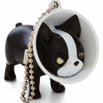 Boston Terrier Gifts Ideas